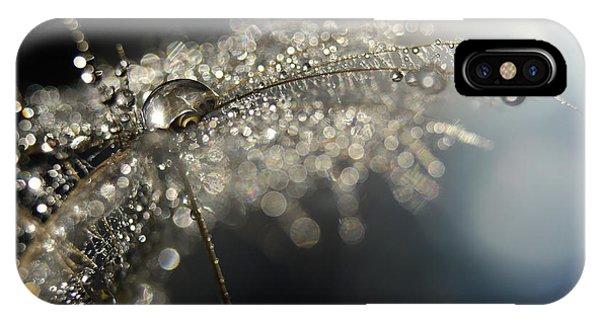 Seeds iPhone Case - Reflection Explotion by Heidi Westum