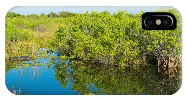 Anhinga iPhone Case - Reflection Of Trees In A Lake, Anhinga by Panoramic Images