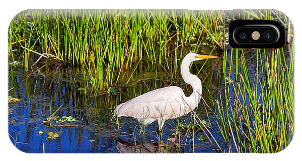 Boynton iPhone Case - Reflection Of White Crane In Pond by Panoramic Images