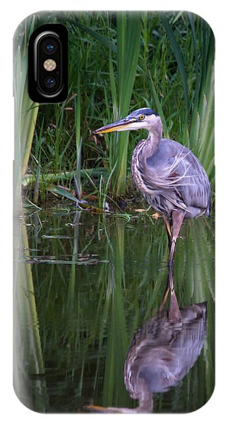 Reflections - Great Blue Heron  Phone Case by Doug Underwood