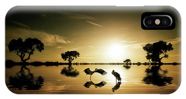 Reflections In The Lake IPhone Case