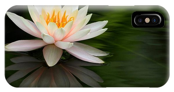 Reflections Of A Water Lily IPhone Case