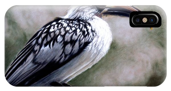 Regal Hornbill IPhone Case
