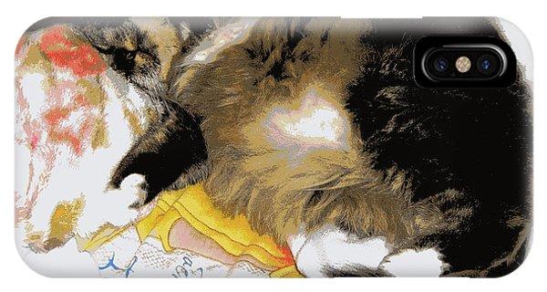Relax Cat IPhone Case