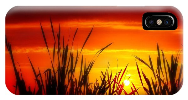 Reservoir Sunset Tall Grass IPhone Case