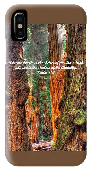 Rest In The Shadow Of The Almighty - Psalm 91.1 - From Sunlight Beams Into The Grove At Muir Woods IPhone Case