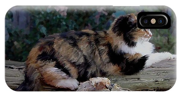 Resting Calico Cat IPhone Case