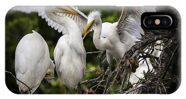 Restless Teenage Egrets IPhone Case