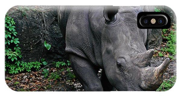 Rhino Phone Case by Rachael M