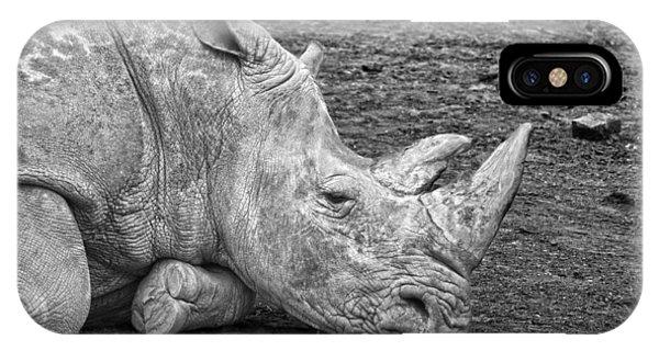 Rhinocerus iPhone Case - Rhinoceros by Nancy Aurand-Humpf