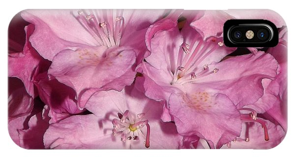 Rhododendron Bliss IPhone Case