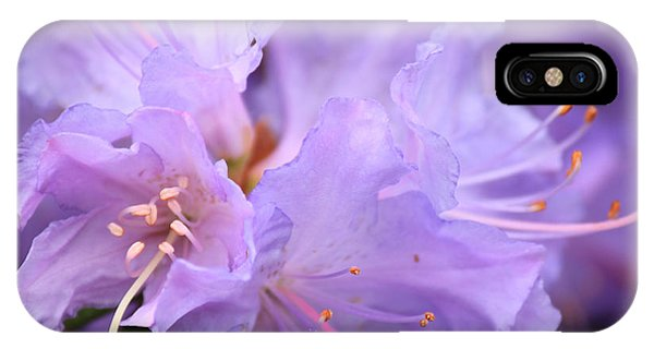 Rhododendron Flower IPhone Case