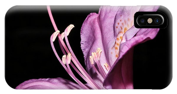 Rhododendron Maximum IPhone Case