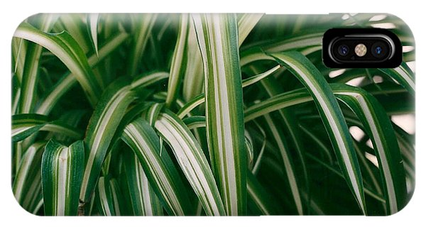 Ribbon Grass IPhone Case