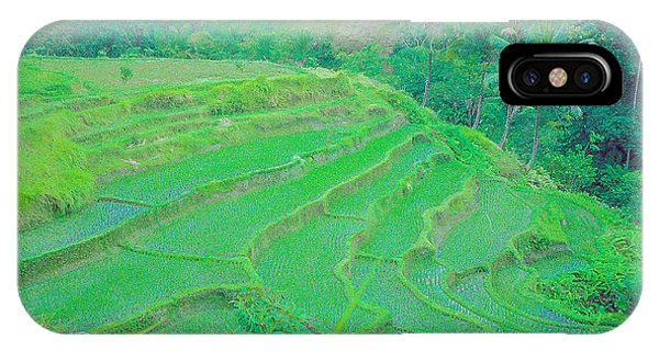 Rice Fields In Indonesia IPhone Case
