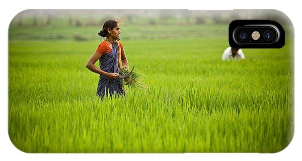 Rice Harvest IPhone Case