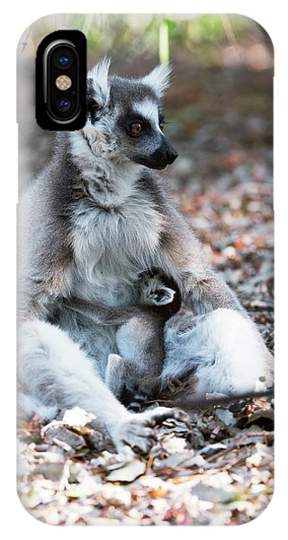 Ring-tailed Lemur And Baby Phone Case by Dr P. Marazzi