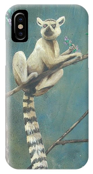 Ring-tailed Lemur iPhone Case - Ring Tailed Lemur by Marty Guy