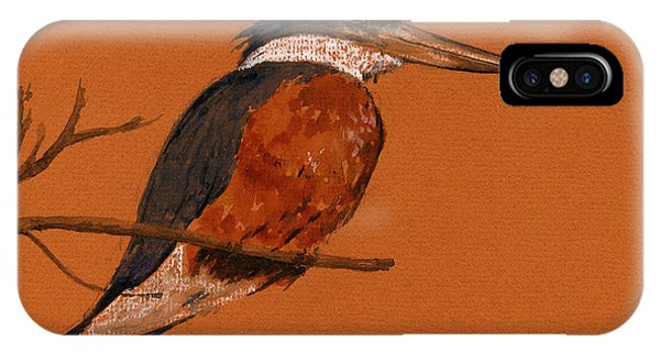 Kingfisher iPhone Case - Ringed Kingfisher Bird by Juan  Bosco