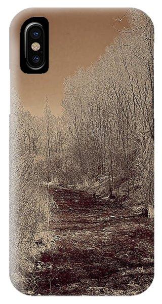 Rio Taos Bosque Iv IPhone Case
