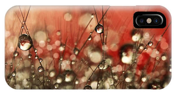 Riot Red Cactus Sparkles IPhone Case