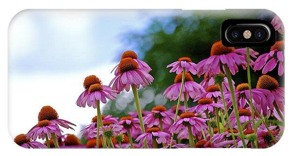 Rising Echinacea IPhone Case