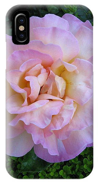 Ritzy Pink Rose IPhone Case