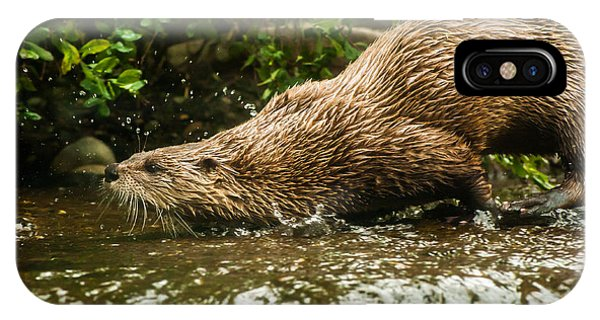 River Otter IPhone Case