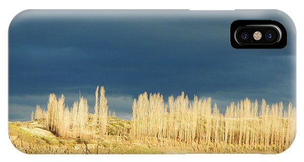 River Poplars					 IPhone Case