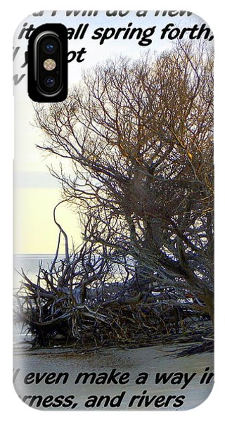 Rivers In The Desert IPhone Case
