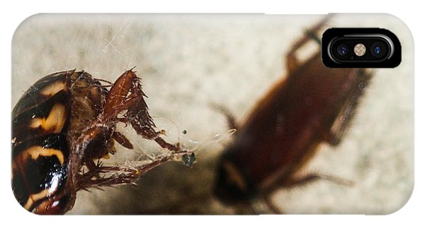 Roachs Demise IPhone Case