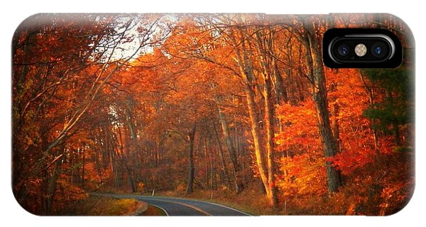 Road In The Park IPhone Case