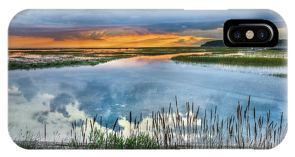 Tidal Marsh iPhone Case - Road To Lieutenant Island by Bill Wakeley