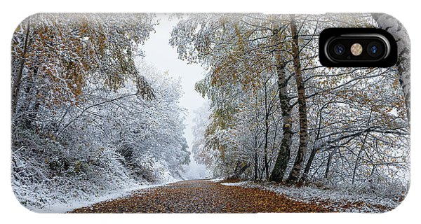Birch Tree iPhone Case - Road To Winter by Arzur Michael
