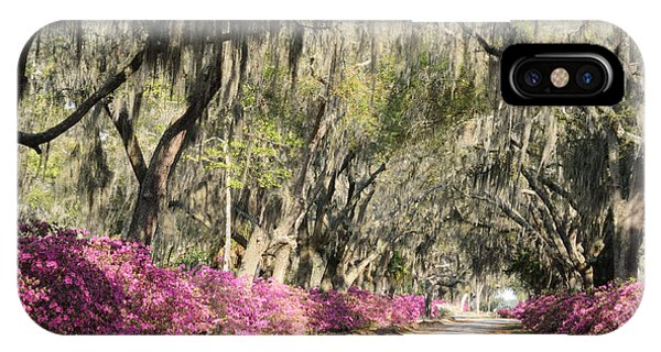 Road With Azaleas And Live Oaks IPhone Case