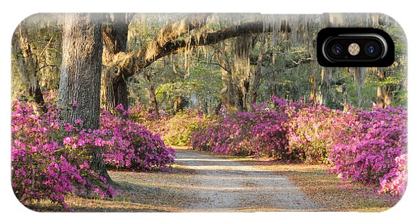 Road With Live Oaks And Azaleas IPhone Case