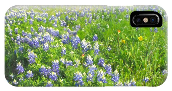 Roadside Bluebonnets  IPhone Case