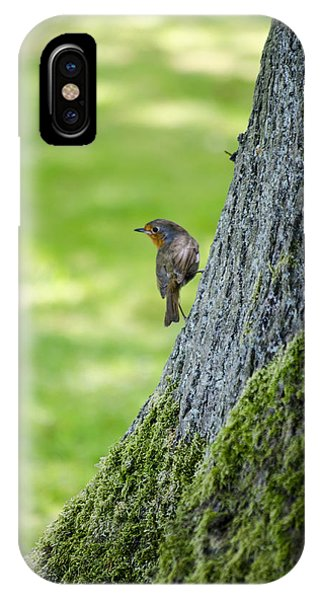 Robin At Rest IPhone Case