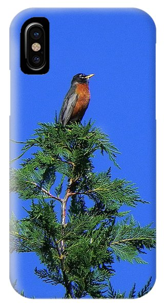 Robin Christmas Tree Topper IPhone Case