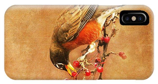 Robin Eating Berries IPhone Case
