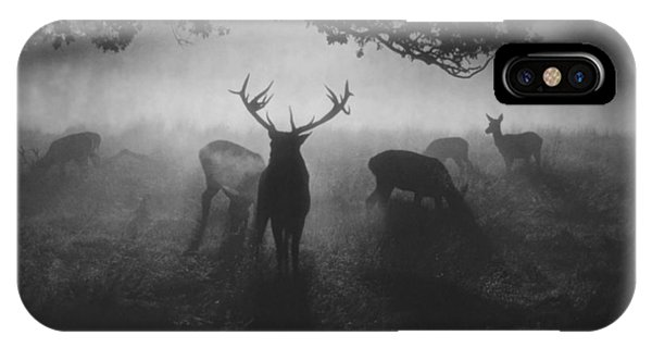 Fog iPhone Case - Robin Hood Woods by Robert Fabrowski