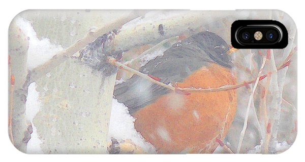 Robin In April Snow IPhone Case