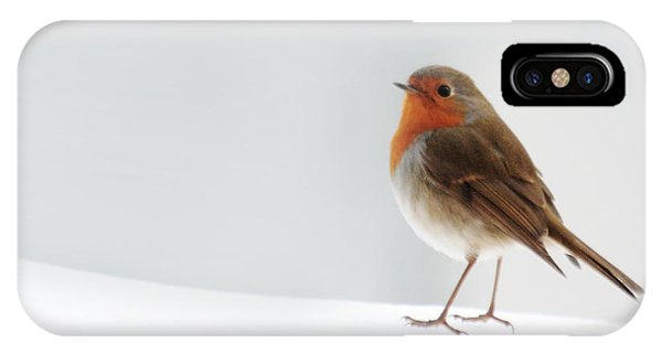 Robin Into The Snow IPhone Case