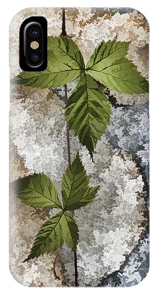 Rock And Vine IPhone Case