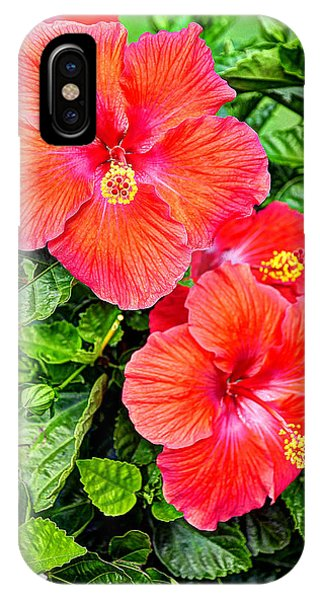 Rocky Hill Hibiscus IPhone Case