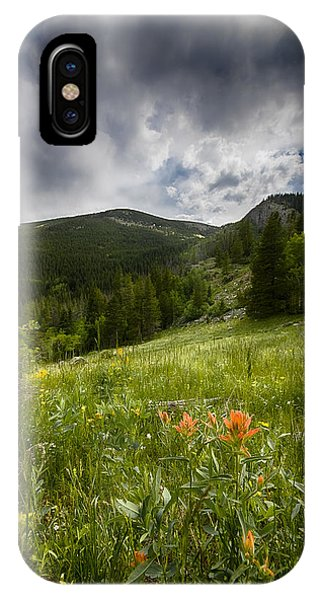Rocky Mountain Meadow Phone Case by Garett Gabriel