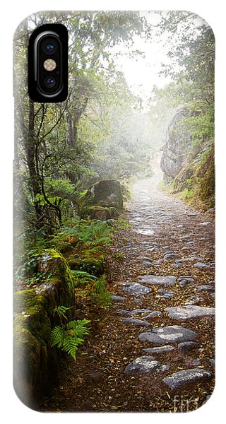 Rocky Trail In The Foggy Forest IPhone Case