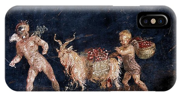 Roman Fresco Showing Flower Dealers Phone Case by Patrick Landmann/science Photo Library