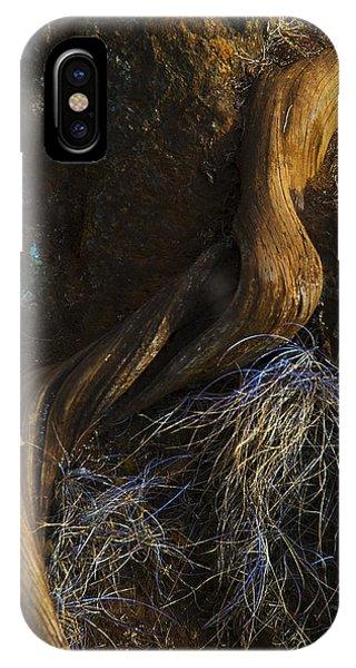 Tree Root IPhone Case