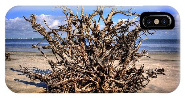 Roots On Jekyll Island IPhone Case